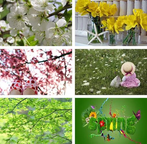 sfondi primavera